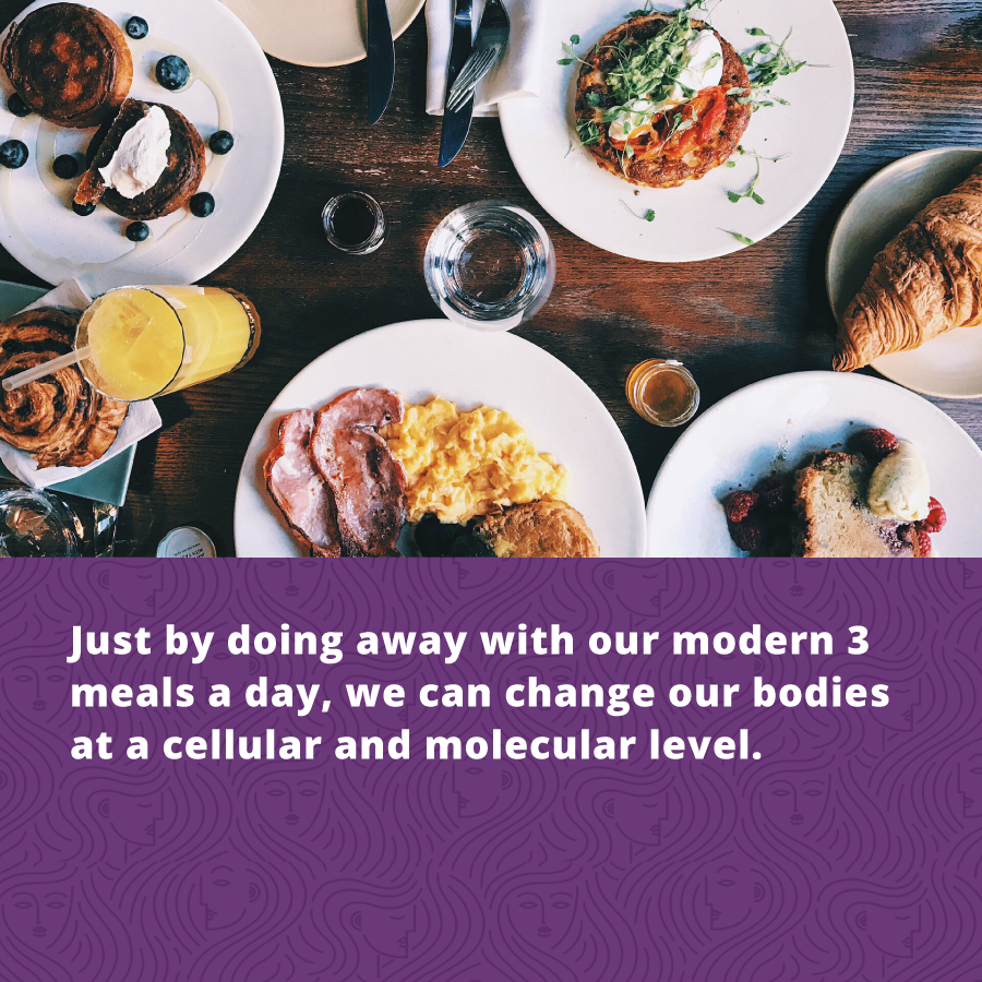 Holistic Health for Women - just by doing away with our 3 meals a day, we can change our bodies at a cellular and molecular level.